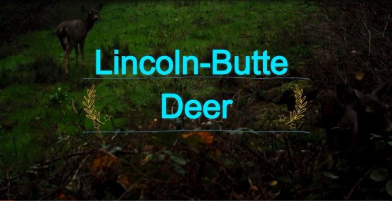 LincolnButteDeer